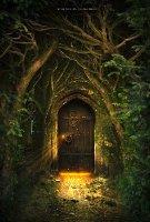 Drzwi w inne wymiary